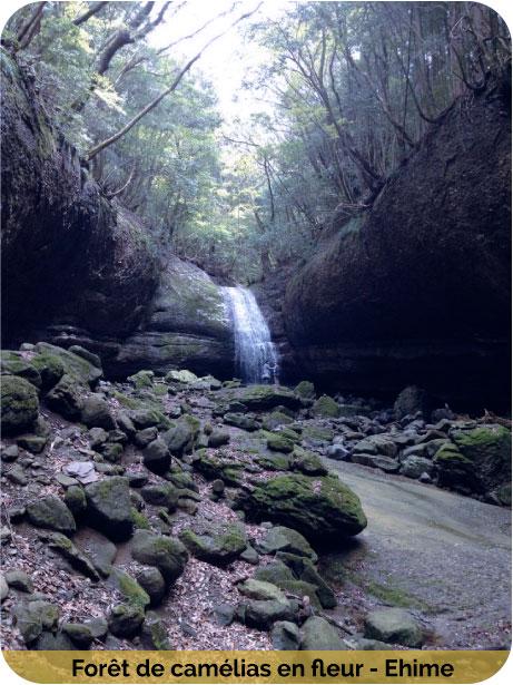 Cascades-n6
